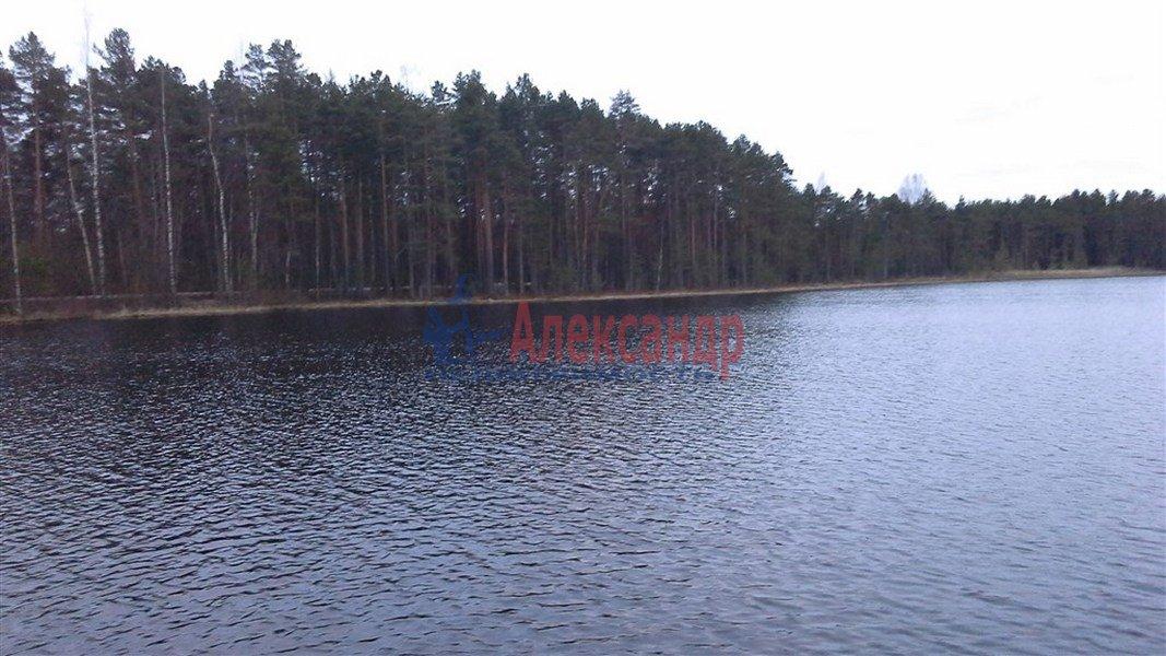 рыбалка в тихвинском районе ленинградской