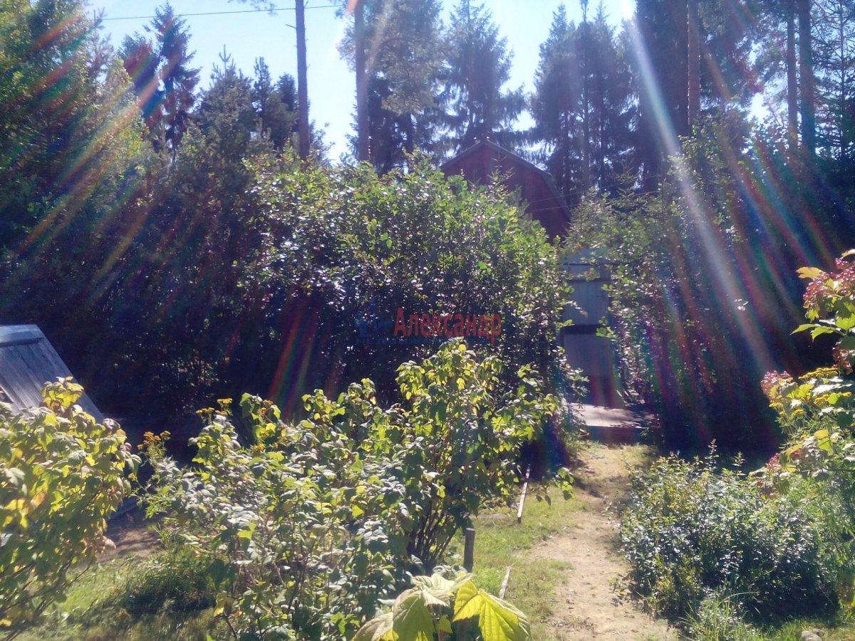 Садовый дом (12м2) на продажу — фото 4 из 25
