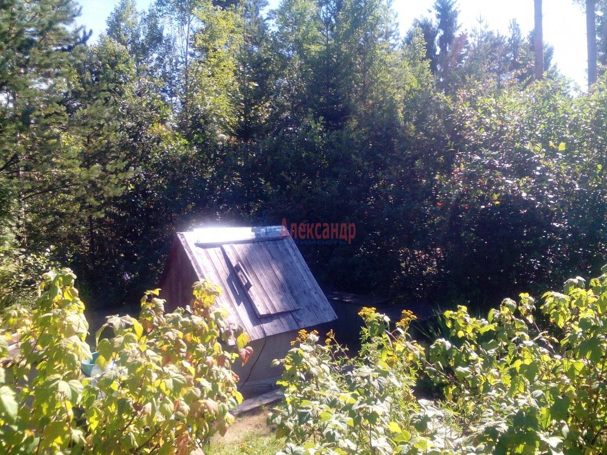 Садовый дом (12м2) на продажу — фото 17 из 25