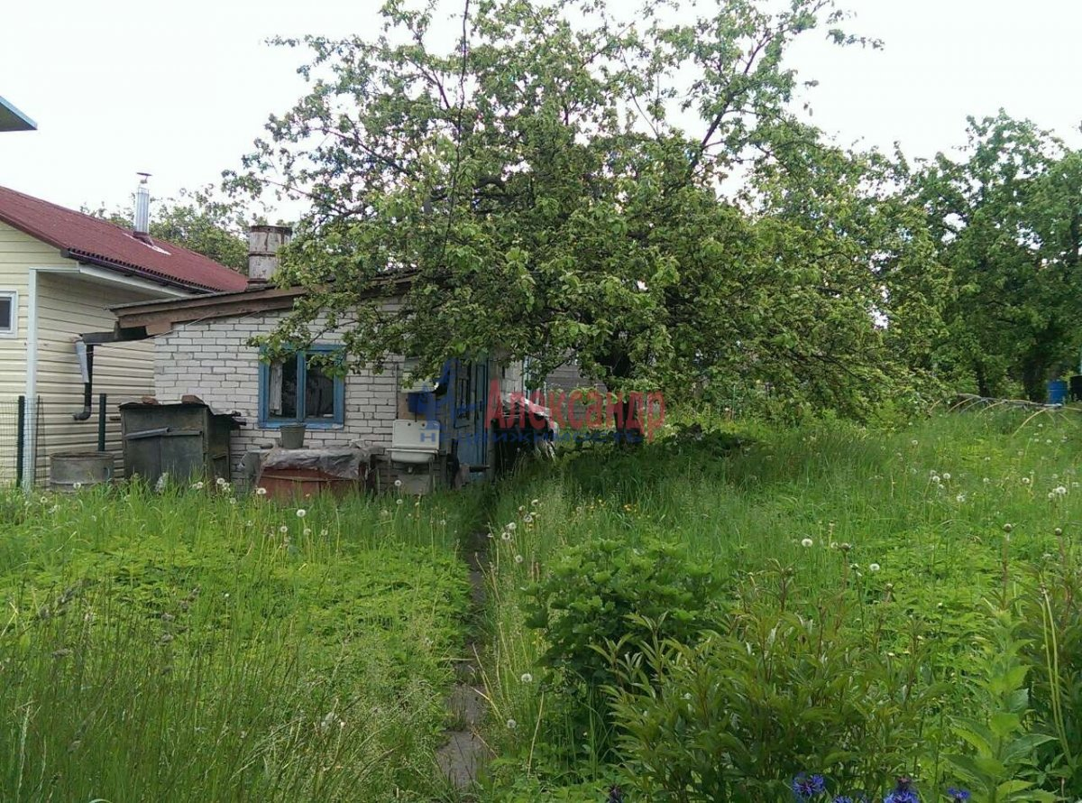 Садовый дом (50м2) на продажу — фото 3 из 9