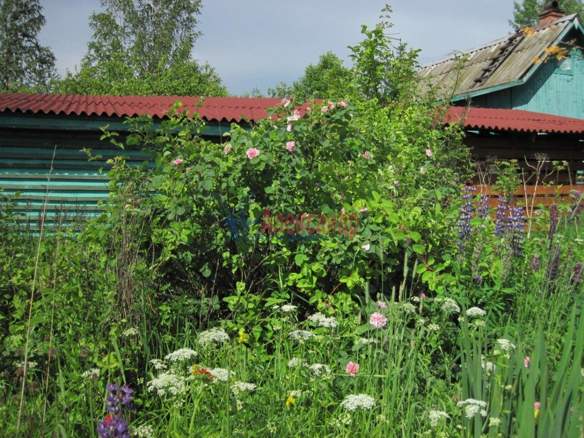 Садовый дом (36м2) на продажу — фото 12 из 40