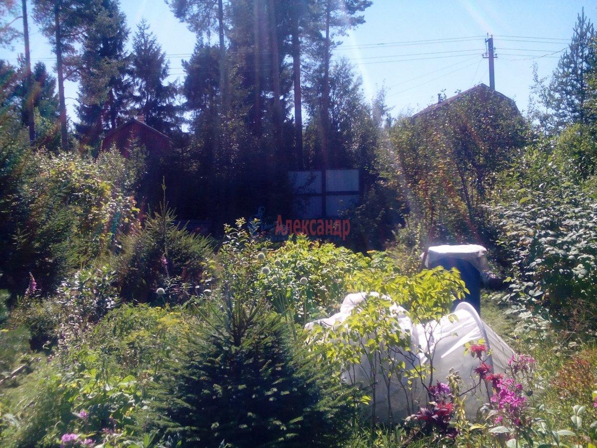 Садовый дом (12м2) на продажу — фото 13 из 25