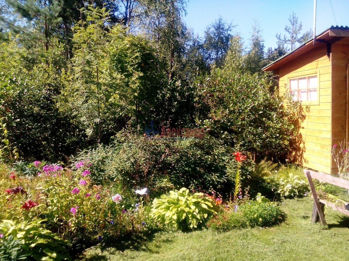 Садовый дом (12м2) на продажу — фото 14 из 25