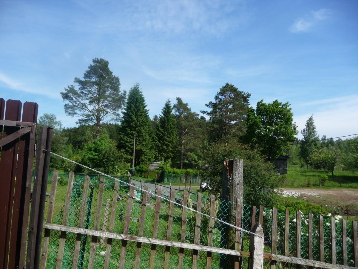 Садовый дом (40м2) на продажу — фото 7 из 7