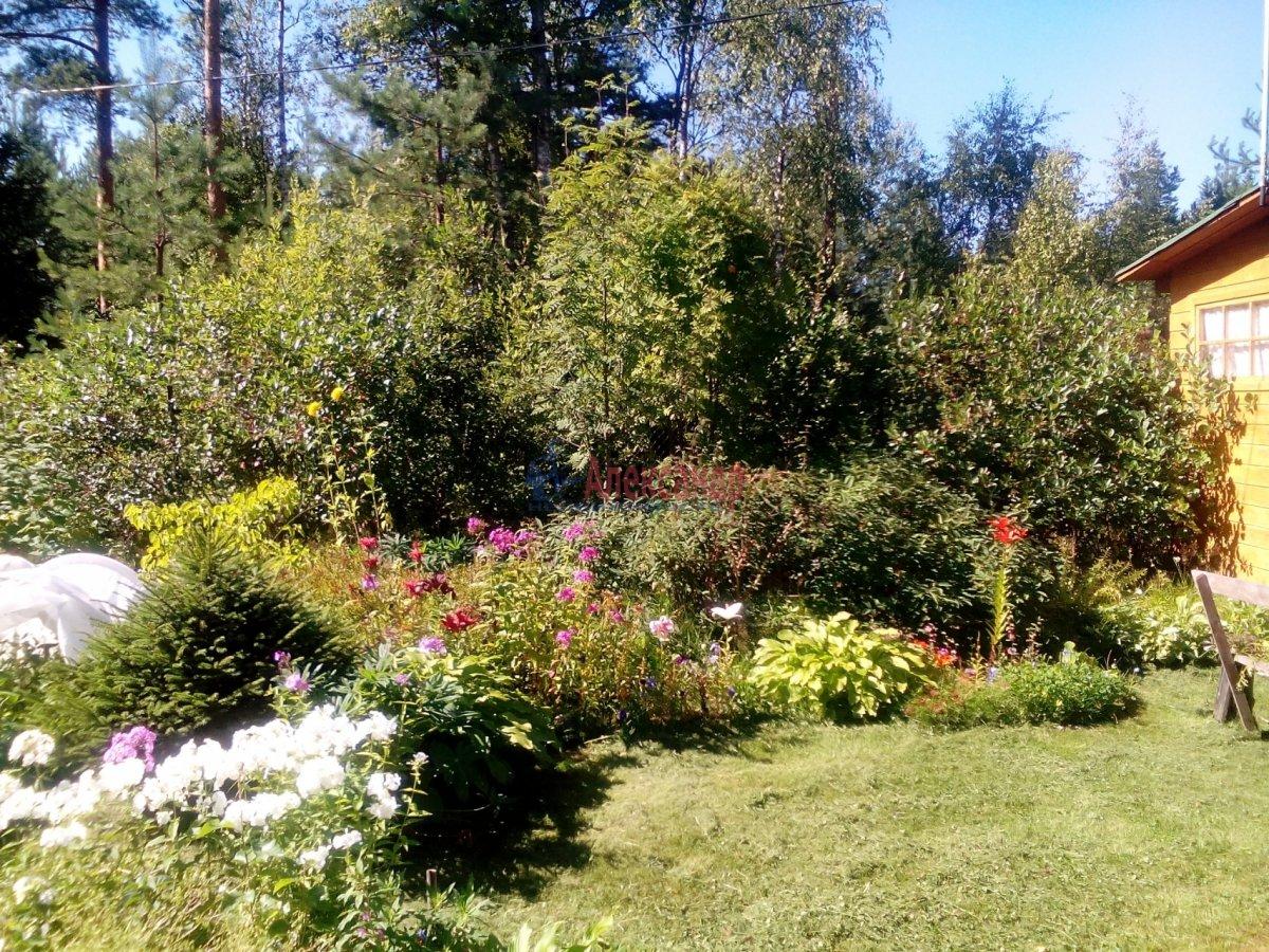 Садовый дом (12м2) на продажу — фото 15 из 25