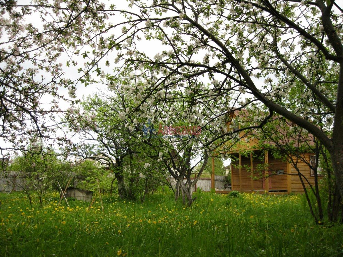 Дачный дом (60м2) на продажу — фото 8 из 12