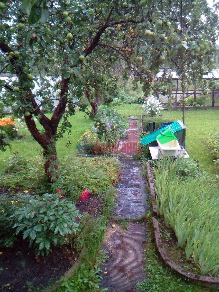 Садовый дом (52м2) на продажу — фото 7 из 12