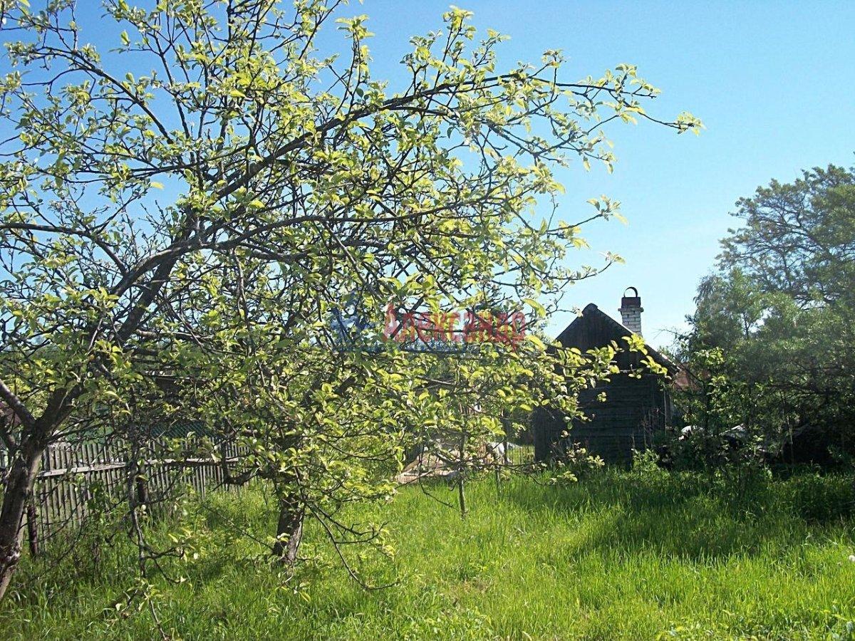 Садовый дом (38м2) на продажу — фото 3 из 3