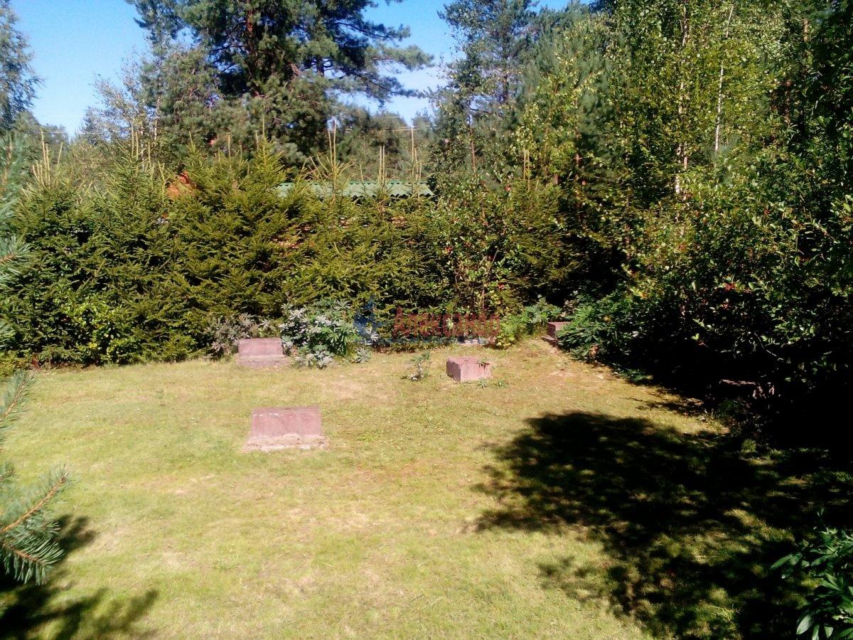 Садовый дом (12м2) на продажу — фото 25 из 25