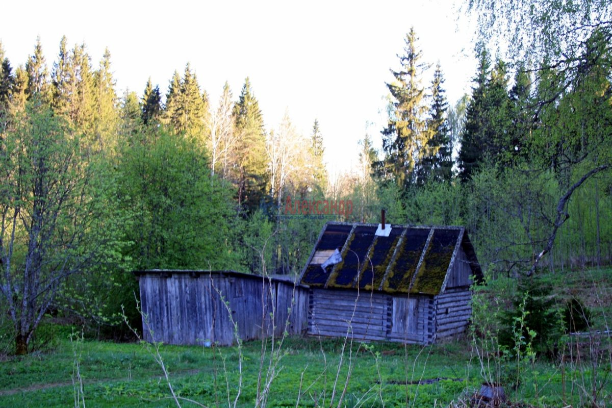 Жилой дом (30м2) на продажу — фото 9 из 13