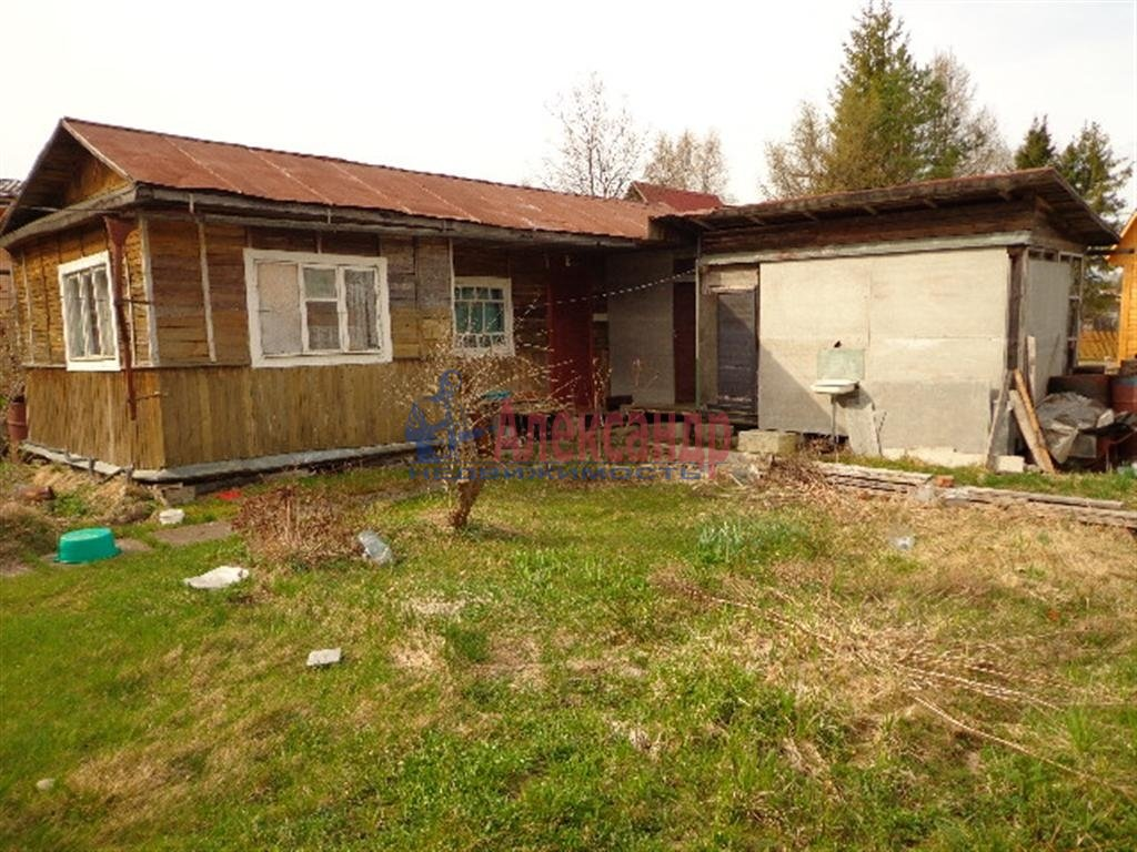 Садовый дом (53м2) на продажу — фото 3 из 4