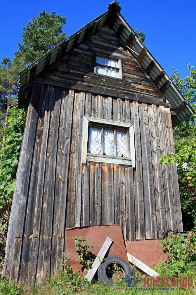 Дачный дом (30м2) на продажу — фото 9 из 20