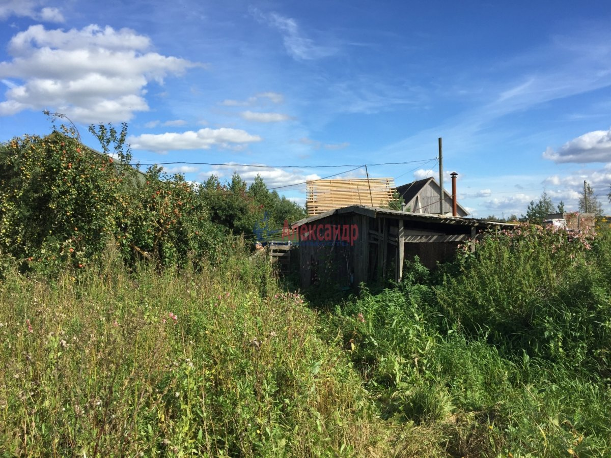 Жилой дом (43м2) на продажу — фото 12 из 29