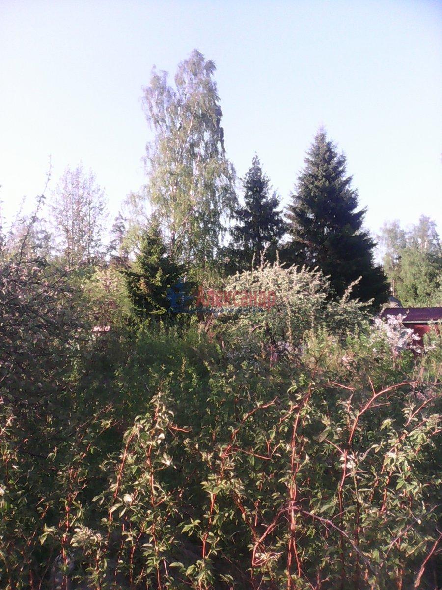 Садовый дом (0м2) на продажу — фото 5 из 5