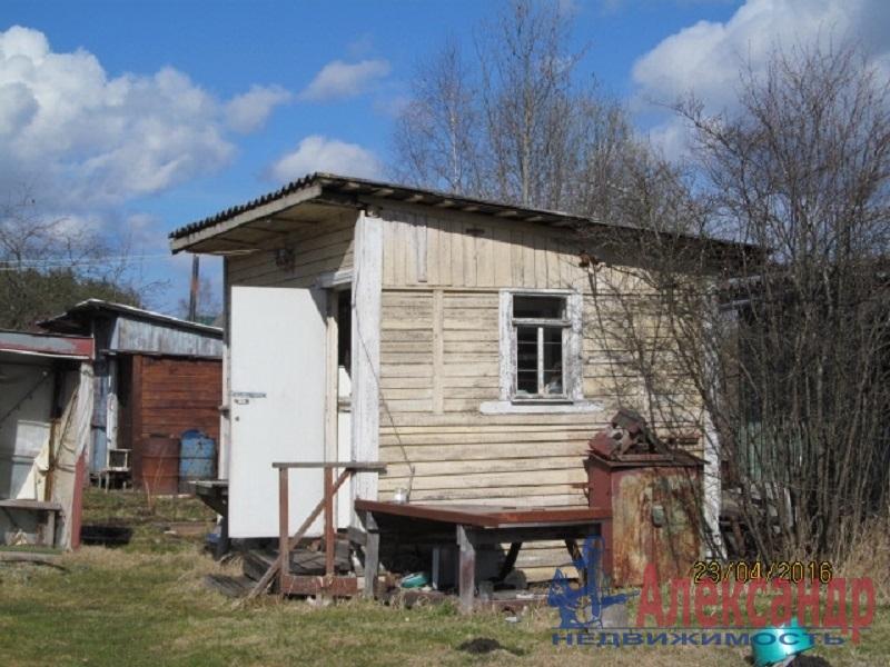 Дачный дом (45м2) на продажу — фото 2 из 6