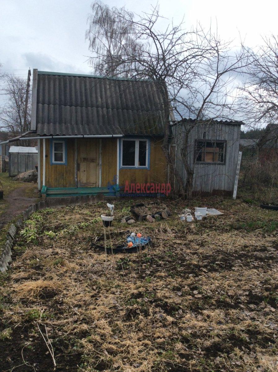 Садовый дом (42м2) на продажу — фото 6 из 7