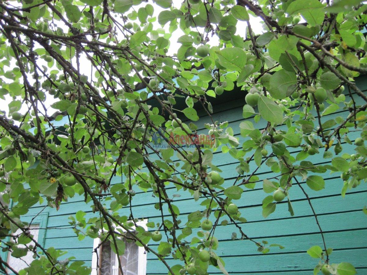 Садовый дом (101м2) на продажу — фото 15 из 37