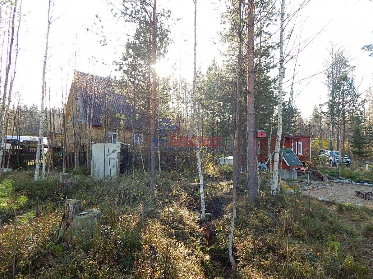 Садовый дом (12м2) на продажу — фото 3 из 19