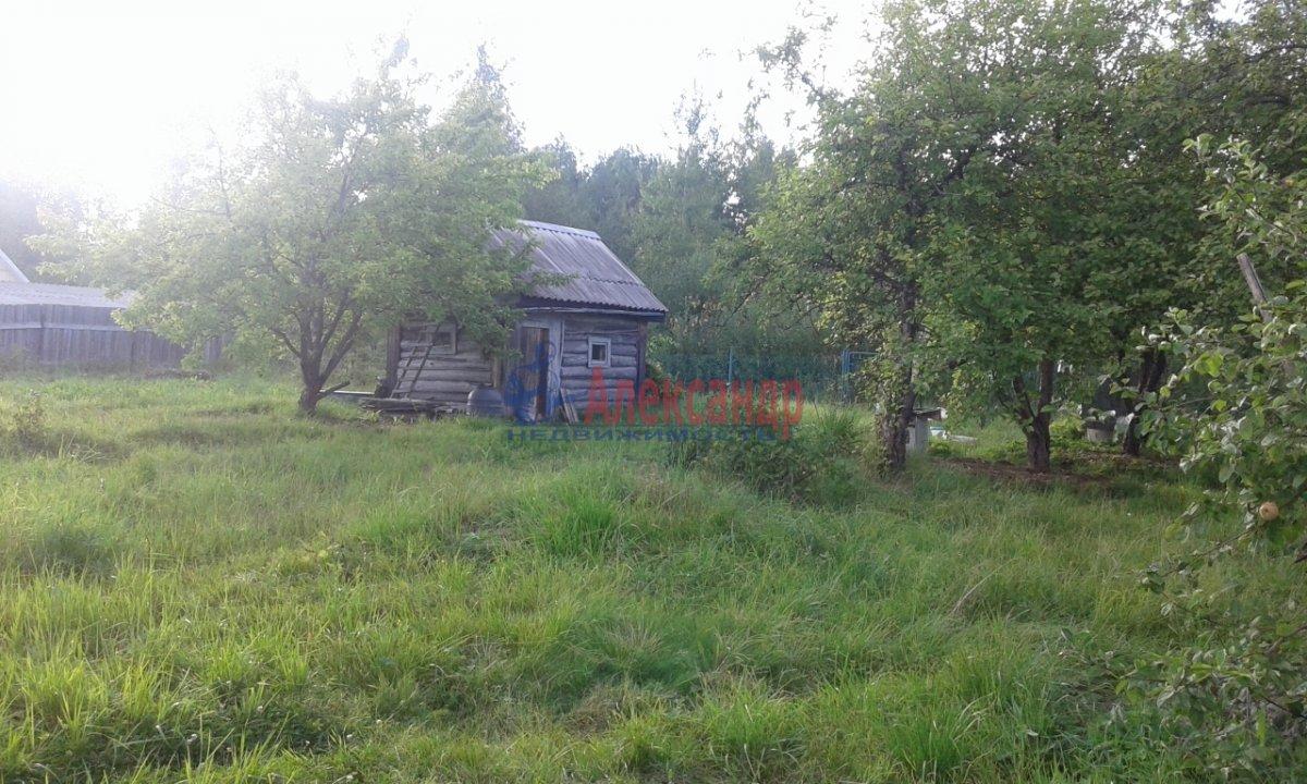 Садовый дом (45м2) на продажу — фото 4 из 8