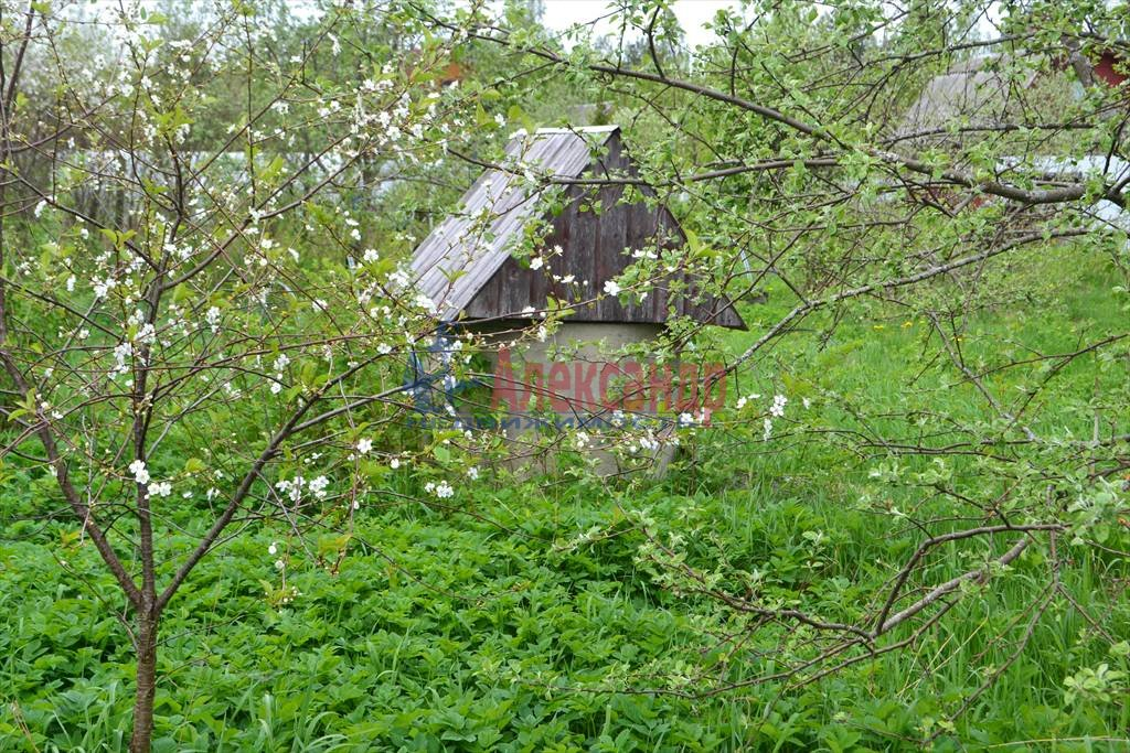 Садовый дом (50м2) на продажу — фото 3 из 3