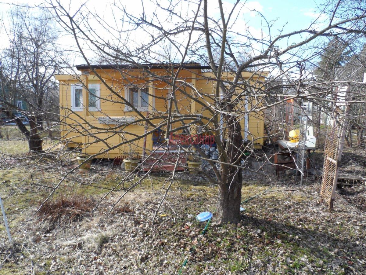 Дачный дом (33м2) на продажу — фото 6 из 11