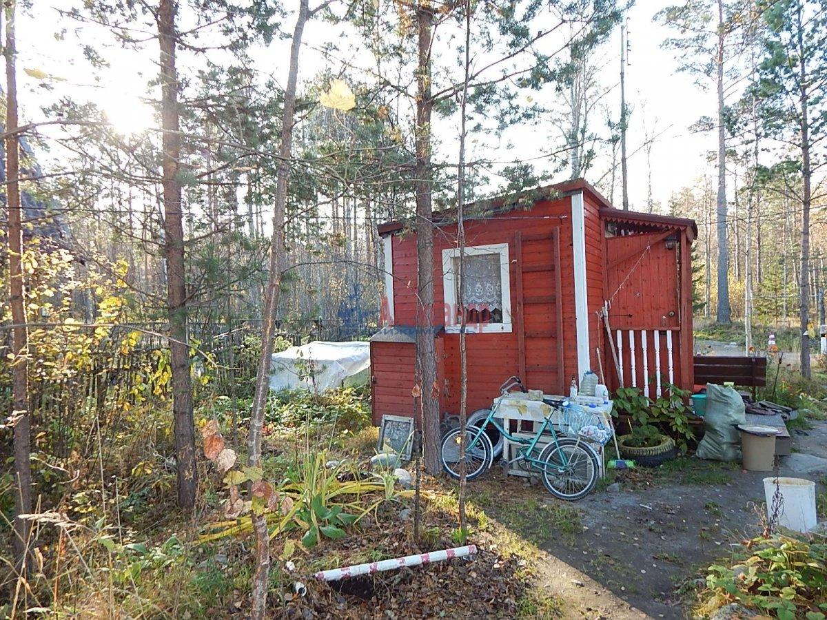 Садовый дом (12м2) на продажу — фото 5 из 19