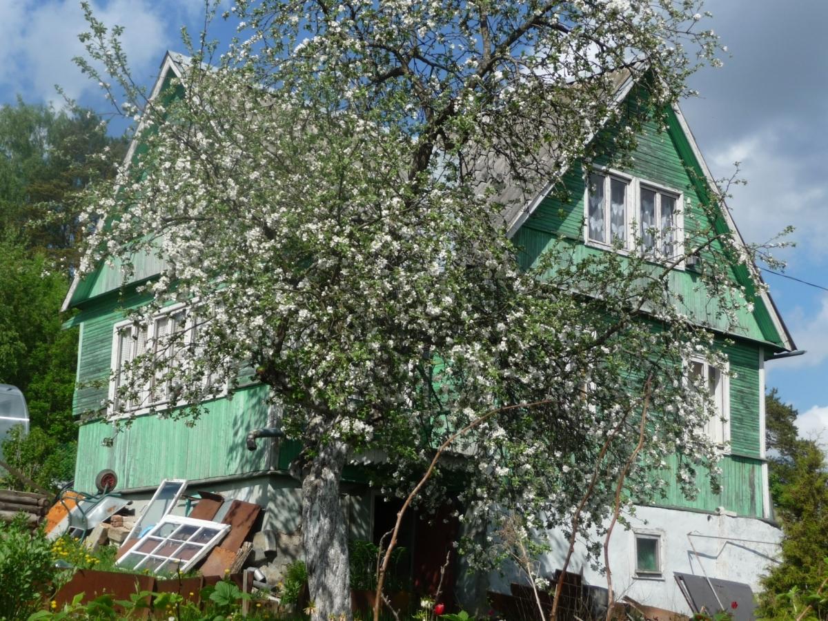 Садовый дом (40м2) на продажу — фото 1 из 7