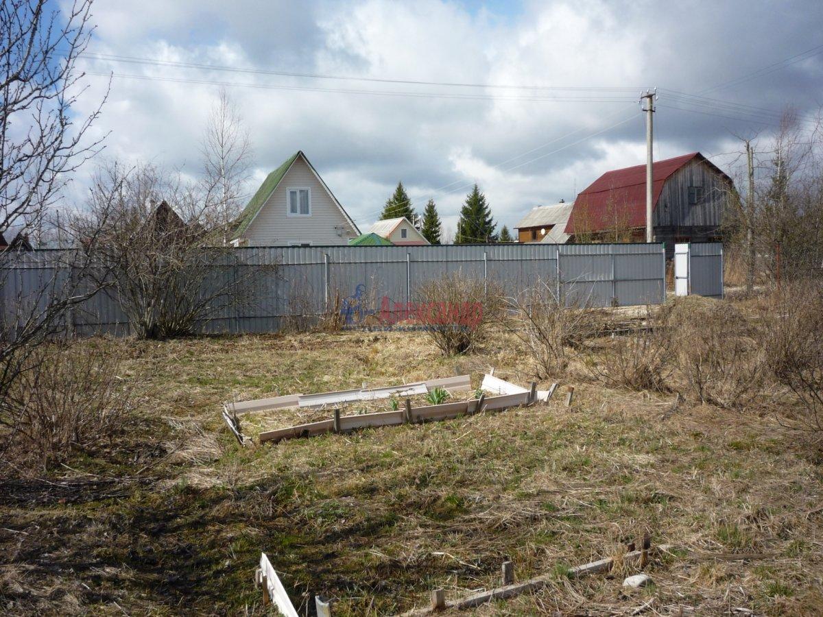 Садовый дом (20м2) на продажу — фото 8 из 13