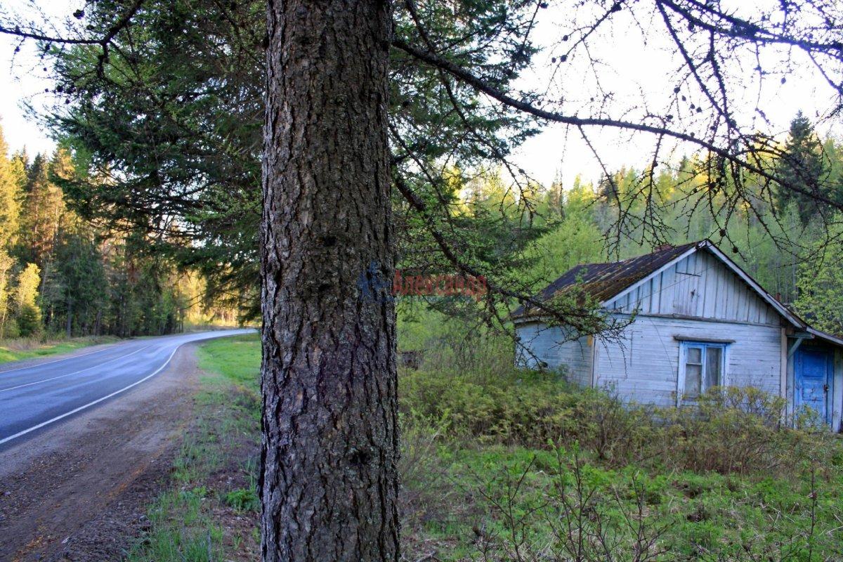 Жилой дом (30м2) на продажу — фото 3 из 13