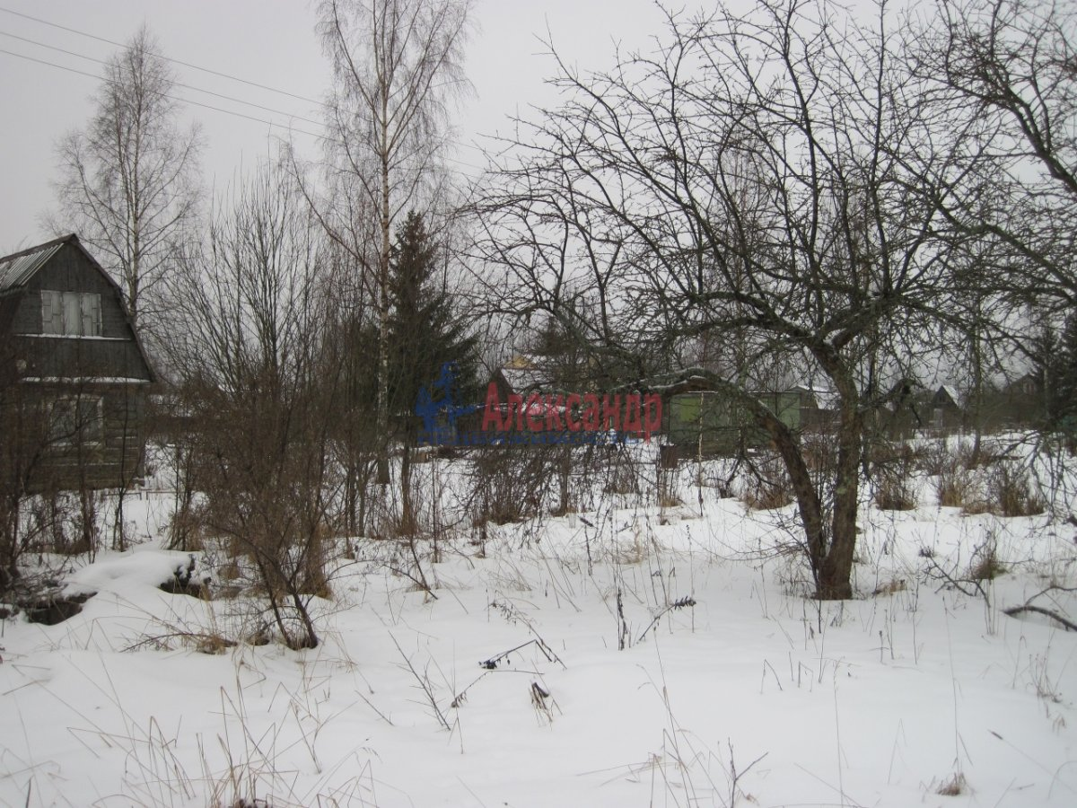 Садовый дом (36м2) на продажу — фото 25 из 40