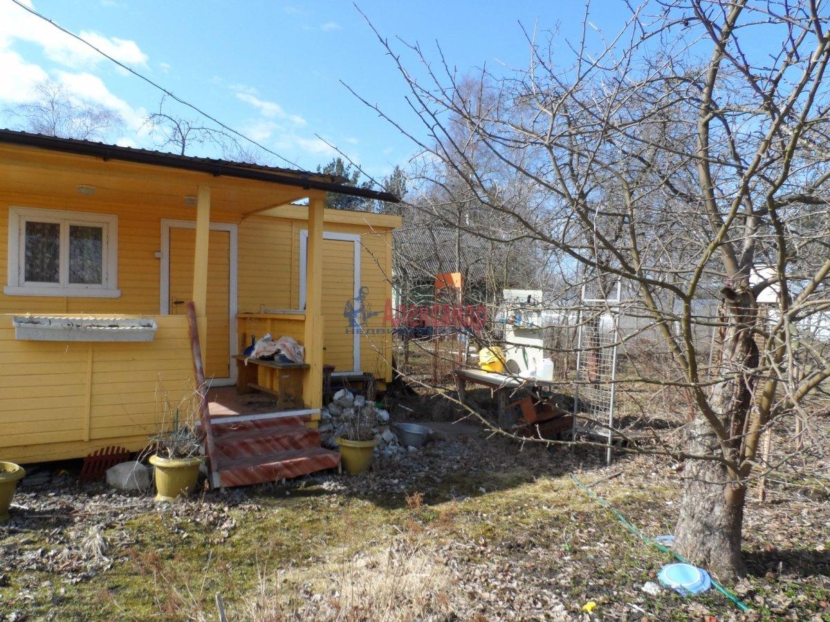Дачный дом (33м2) на продажу — фото 7 из 11