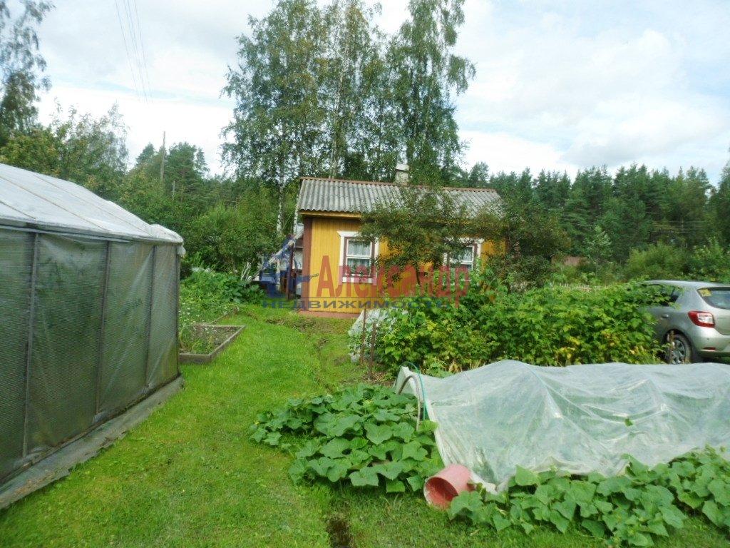 Дачный дом (36м2) на продажу — фото 9 из 16