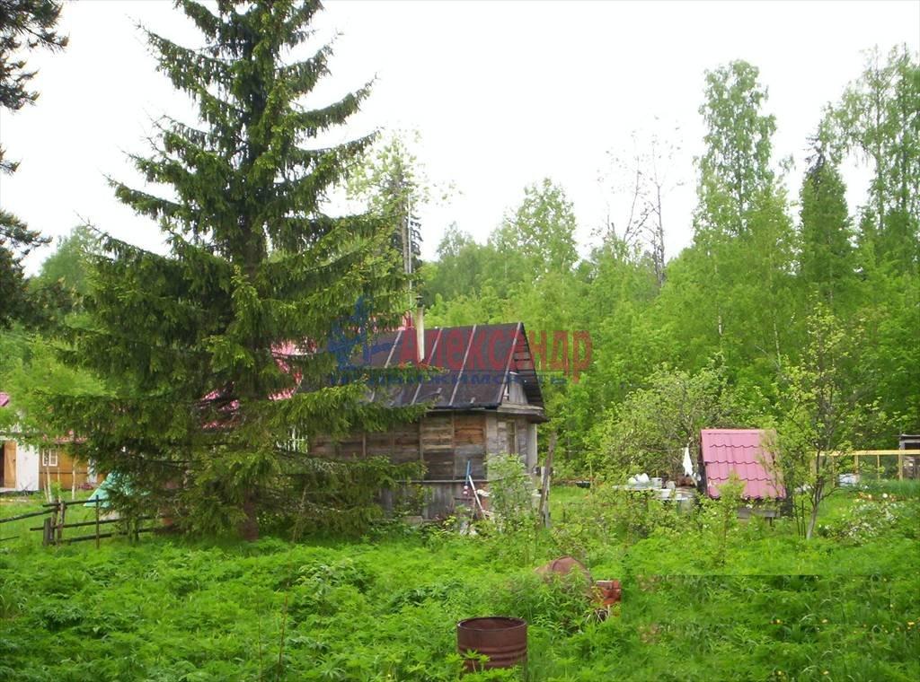 Садовый дом (60м2) на продажу — фото 4 из 11