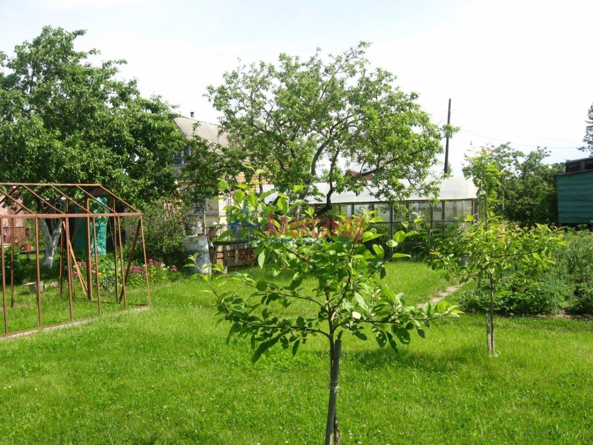 Садовый дом (42м2) на продажу — фото 4 из 8