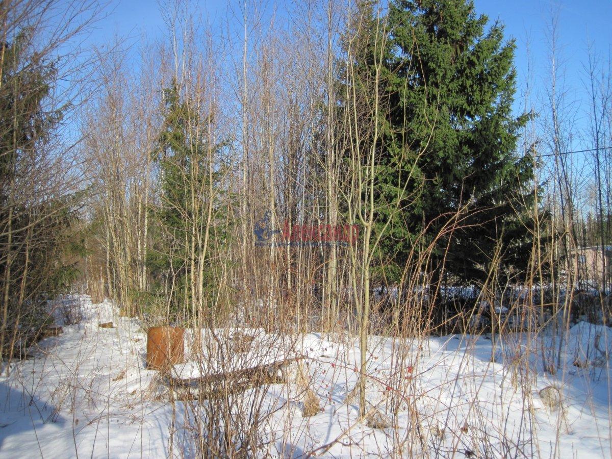 Садовый дом (12м2) на продажу — фото 28 из 42