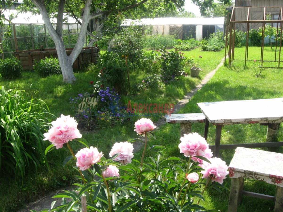 Садовый дом (42м2) на продажу — фото 7 из 8