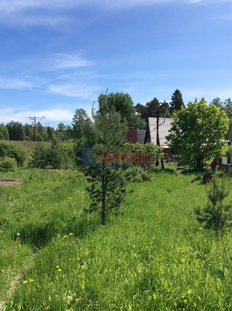 Садовый дом (60м2) на продажу — фото 9 из 17