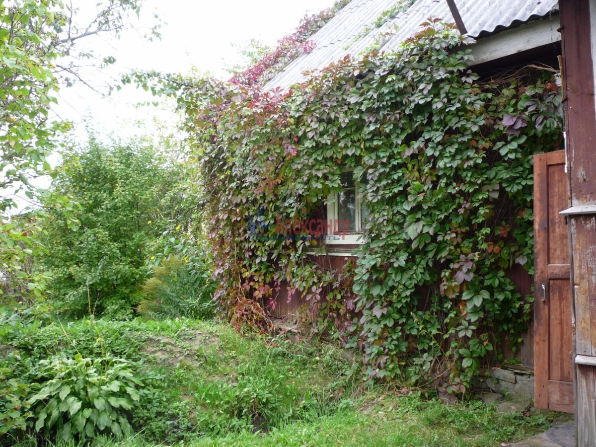 Жилой дом (45м2) на продажу — фото 4 из 14