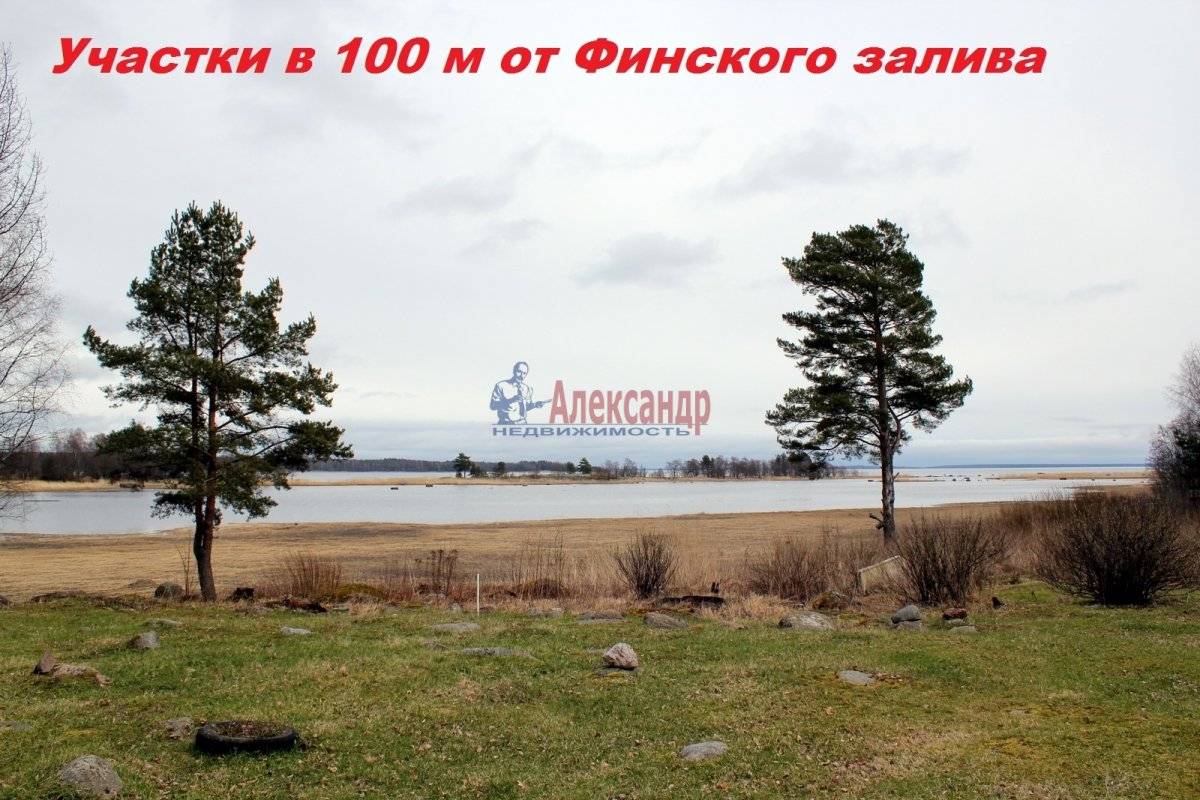 Участок (100м2) на продажу — фото 6 из 7