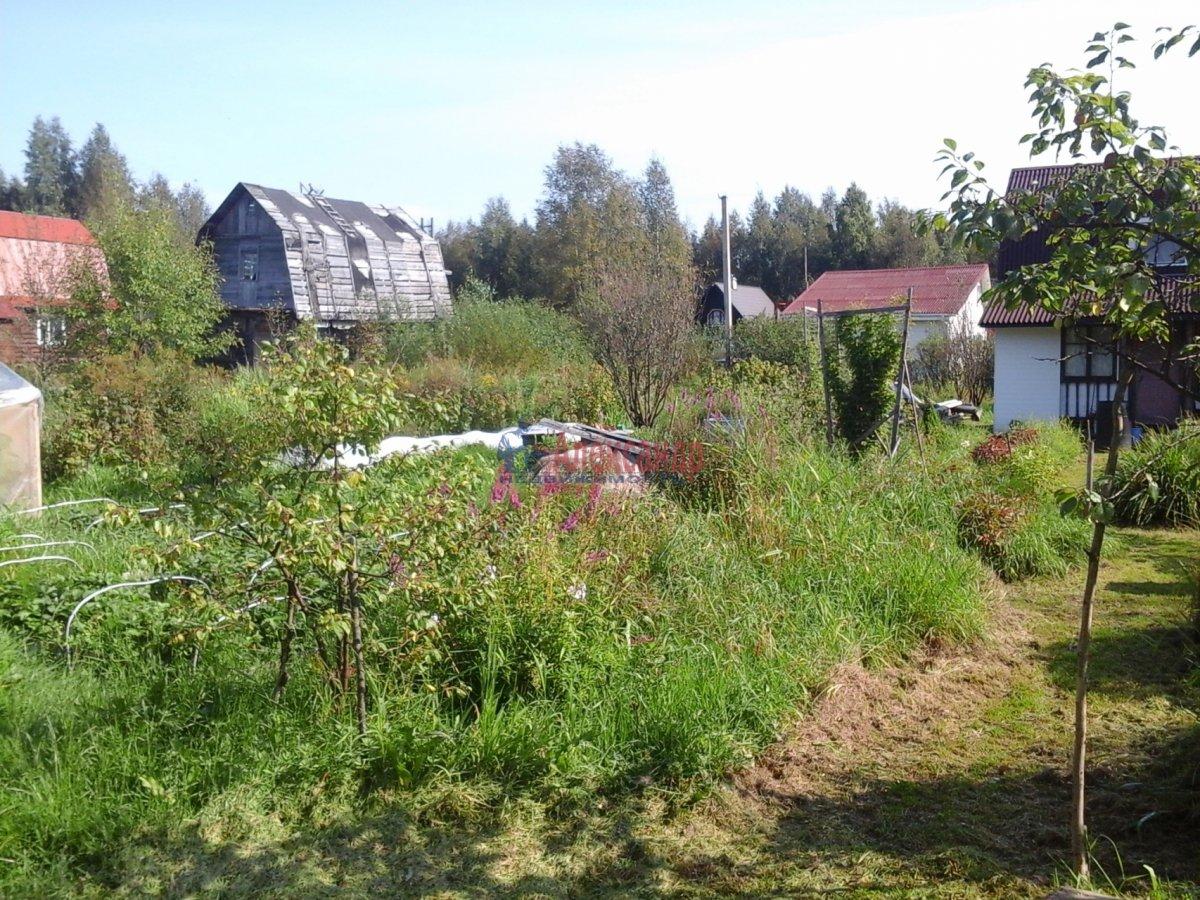 Садовый дом (30м2) на продажу — фото 5 из 19