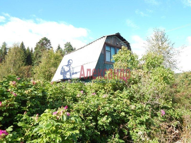 Садовый дом (50м2) на продажу — фото 1 из 27