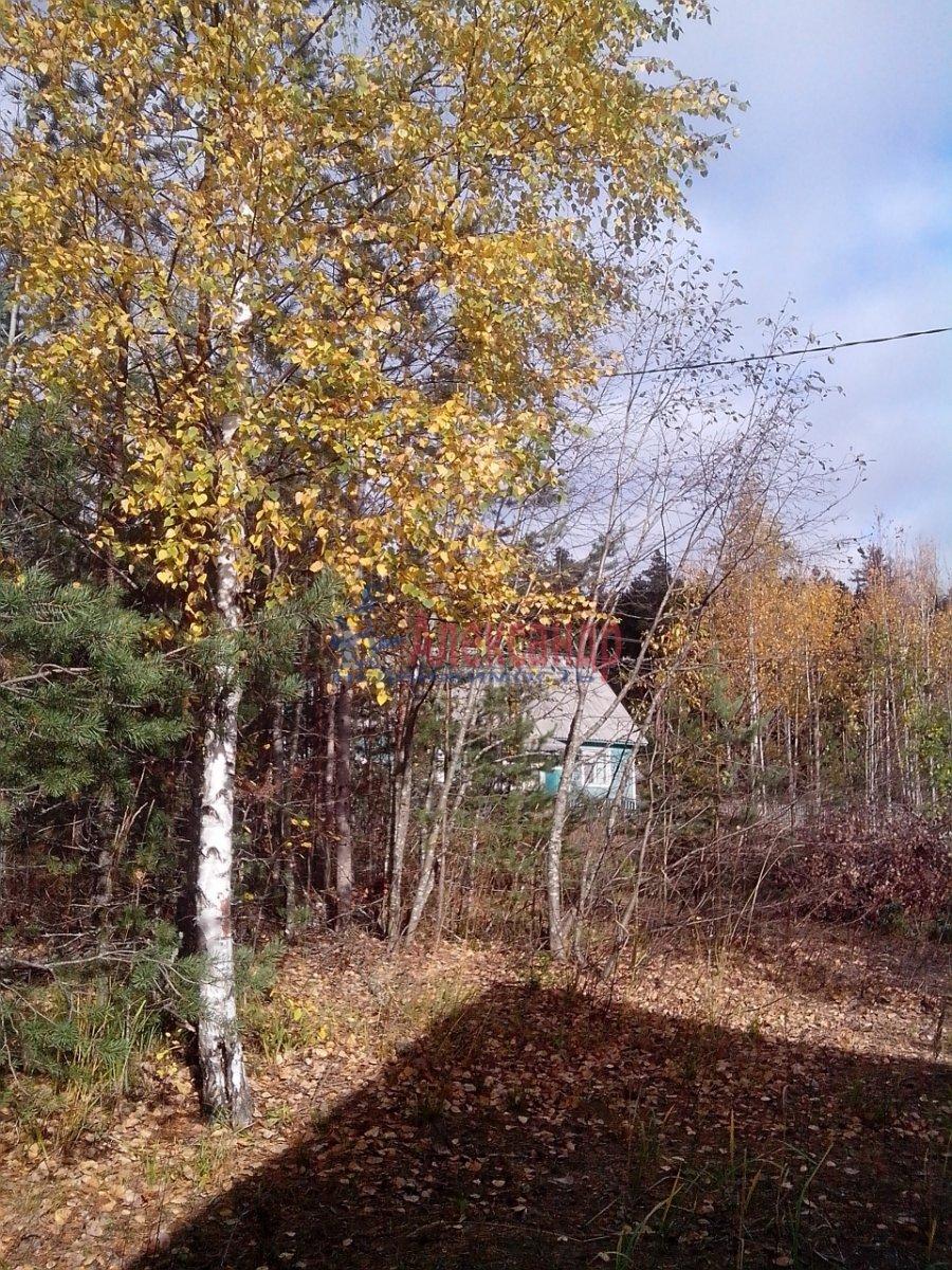 Жилой дом (40м2) на продажу — фото 4 из 9