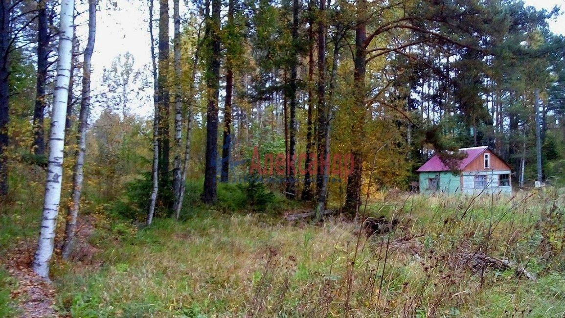 Дачный дом (40м2) на продажу — фото 7 из 11