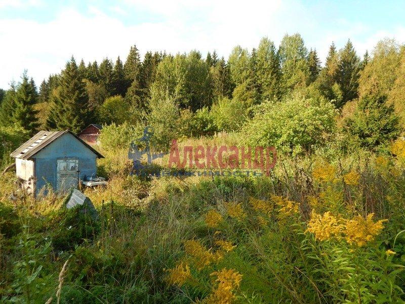 Садовый дом (50м2) на продажу — фото 11 из 27