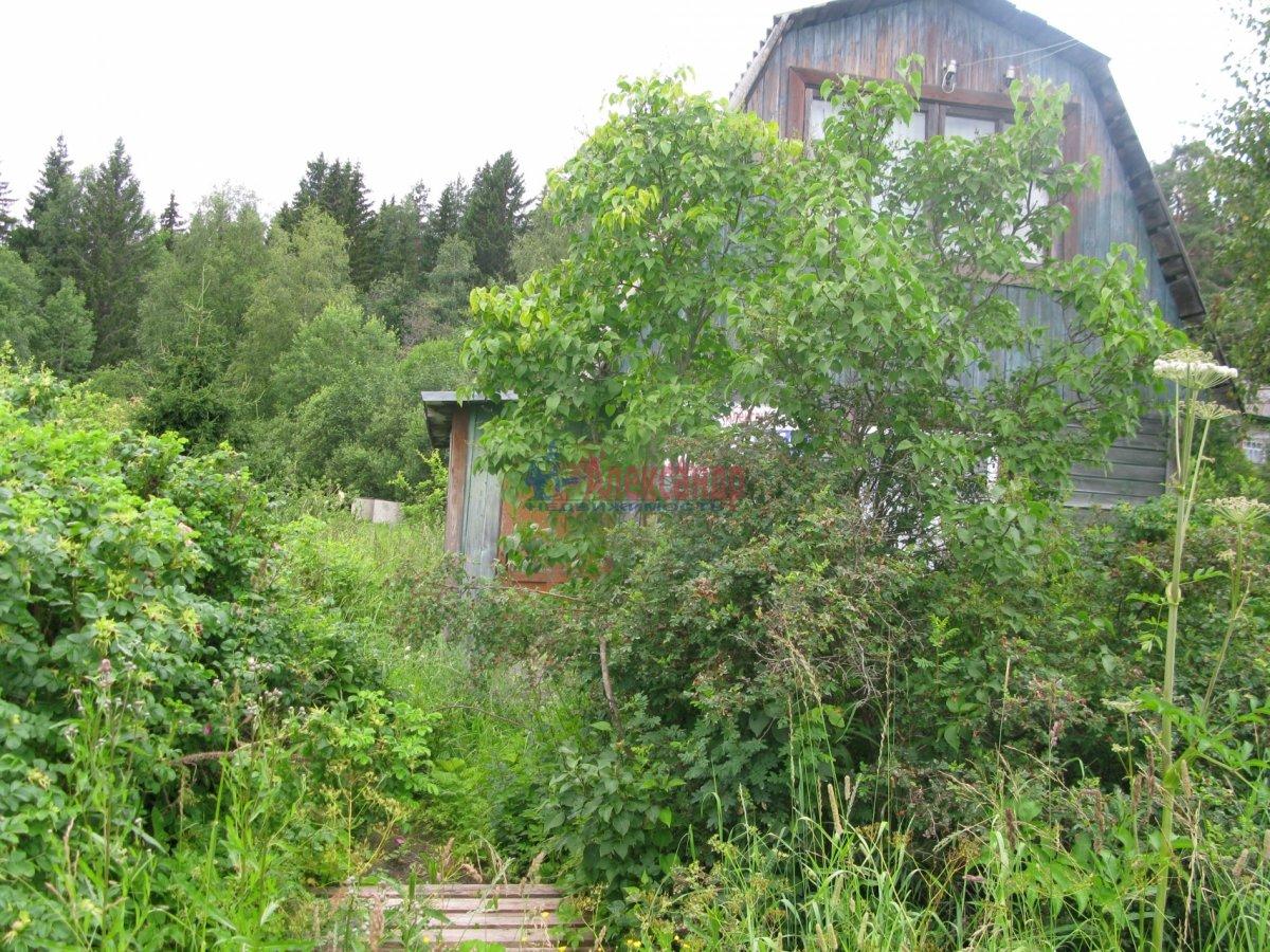 Садовый дом (50м2) на продажу — фото 16 из 27