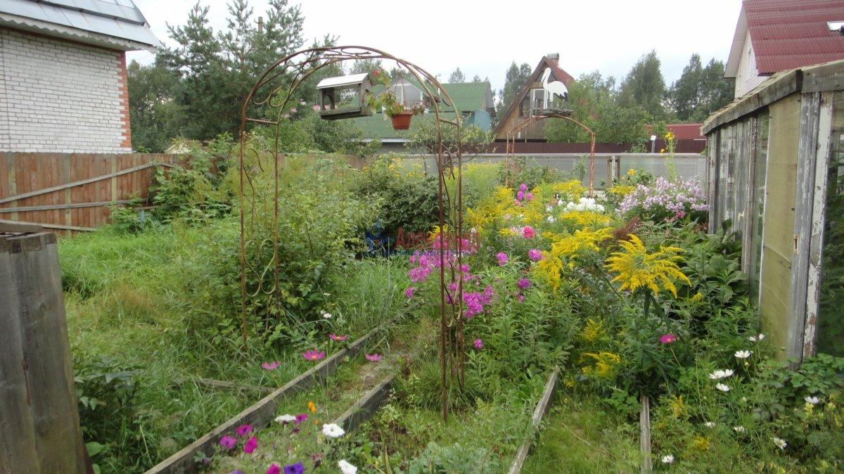 Садовый дом (55м2) на продажу — фото 3 из 24
