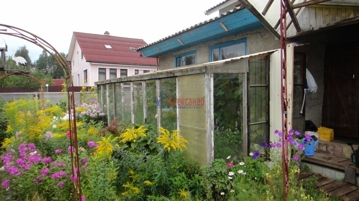 Садовый дом (55м2) на продажу — фото 4 из 24