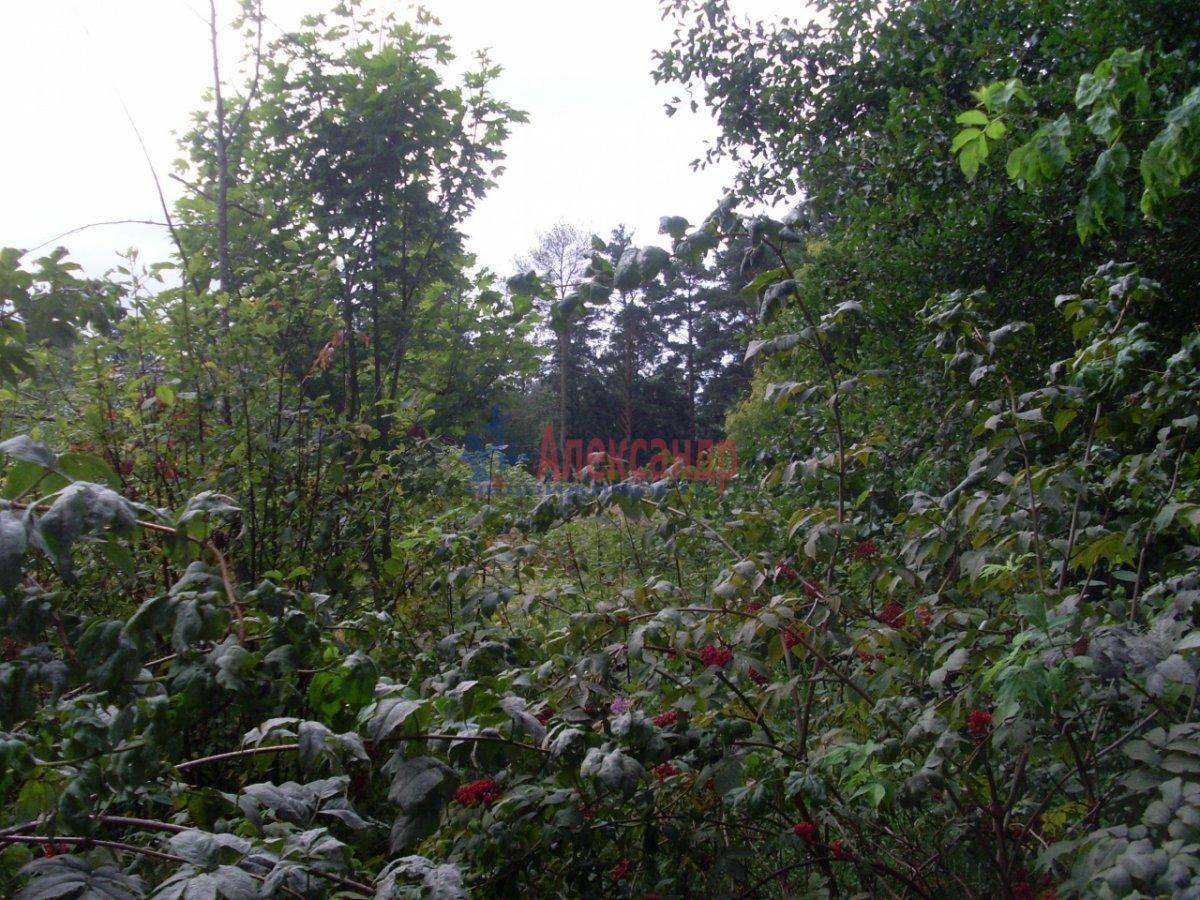 полотна помогает поселок марьино приозерский район побороть осеннюю хандру
