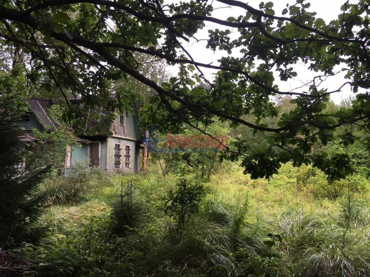 Дачный дом (40м2) на продажу — фото 6 из 7