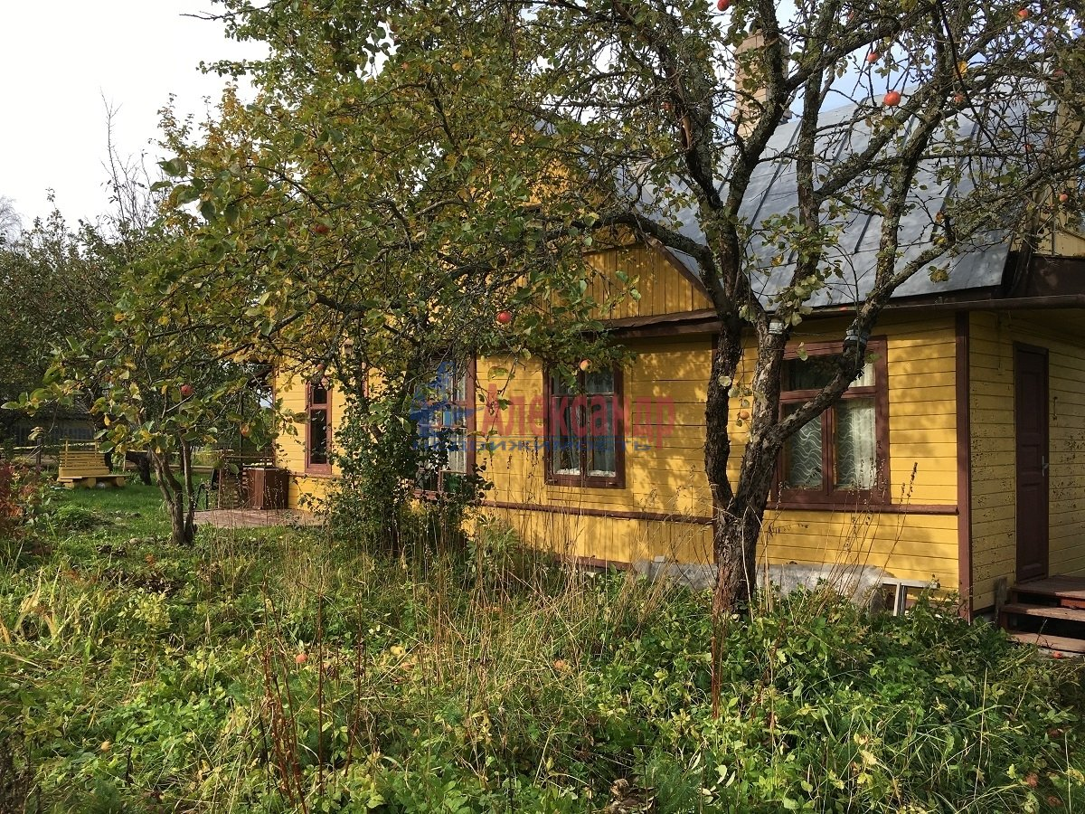 Садовый дом (50м2) на продажу — фото 1 из 9